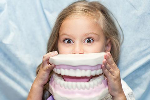 Traitements orthodontiques